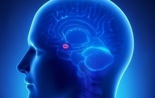 מחקר: איך מוחות שמחים מגיבים לדברים רעים וממשיכם להיות מאושרים