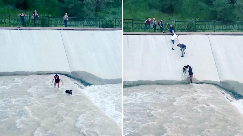 Photo of תראו איזו שרשרת אנושית נבנתה על מנת להציל את הכלב מהנהר!