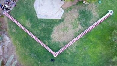 Photo of רולדת התמרים הגדולה בעולם של קיבוץ אילות!