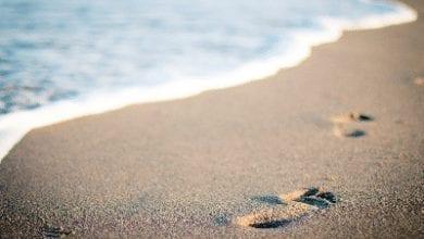 Photo of להירגע, להתבונן ולהיות מאושרים:       3 דרכים פרקטיות שיכניסו את המיינדפולנס לחייכם